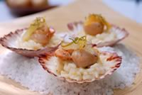 Tasmanian Scallops, citrus rissotto finished with mascarpone parmesan and fresh segments - Double Island Australia